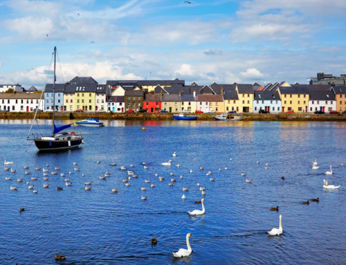 Where to take the IELTS Exam in Galway?