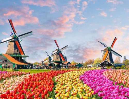 Where to take the TOEFL in Netherlands?