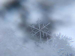 snow-crystal-weather-winter