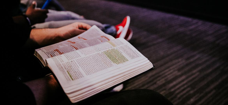 books-study-legs-of-students