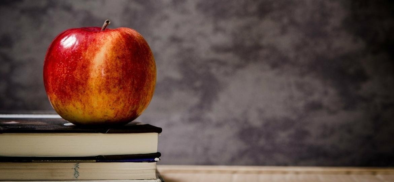 Descubre los mejores cursos de inglés online.